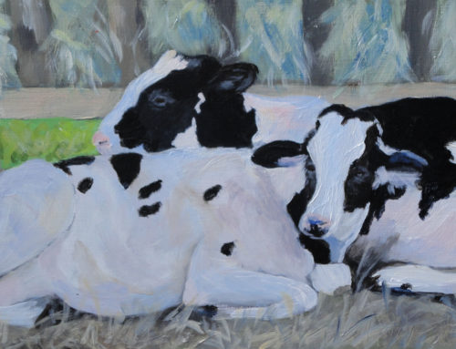 The Two Cows