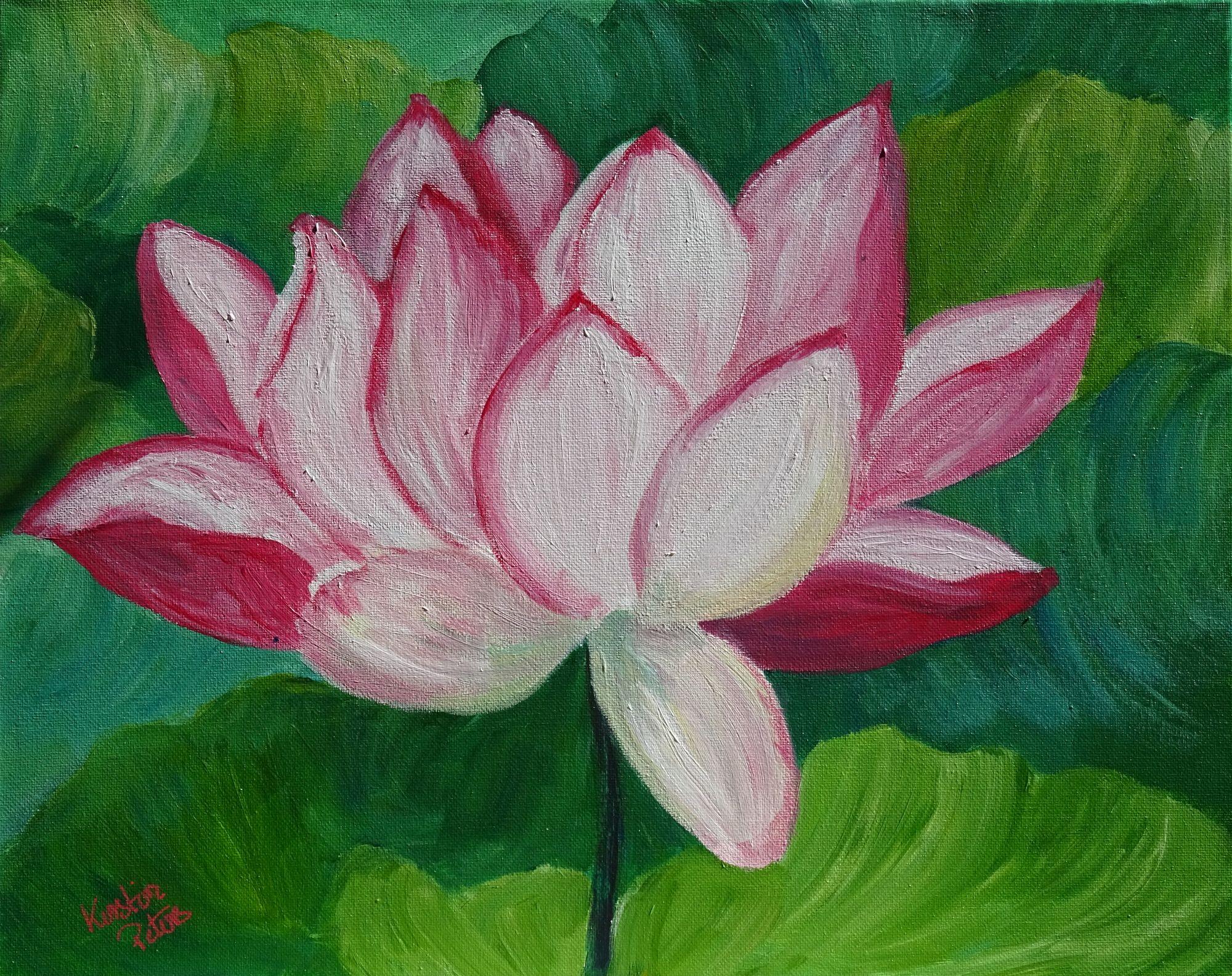 Lotus PP